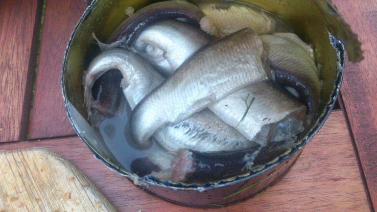 Калейдоскоп, На запах шведского национального блюда вызвали спасателей   На запах шведского национального блюда вызвали спасателей