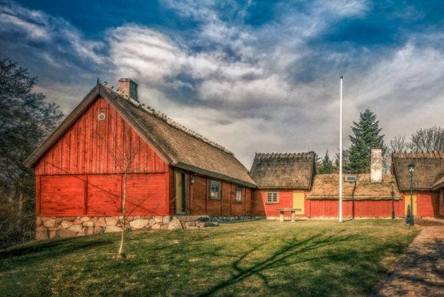 Общество, Беженцы не захотели жить в шведском лесу   Беженцы не захотели жить в шведском лесу