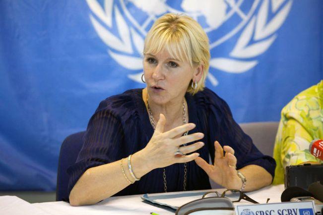 Общество, Шведские левые спонсируют украинских сепаратистов. Российские дипломаты обвиняют Швецию в создании кризиса в Украине | Шведские левые спонсируют украинских сепаратистов. Российские дипломаты обвиняют Швецию в создании кризиса в Украине
