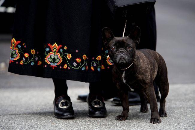 Общество, Ко дню Конституции в аэропорту Осло организовали специальный проход для людей в национальных костюмах | Ко дню Конституции в аэропорту Осло организовали специальный проход для людей в национальных костюмах