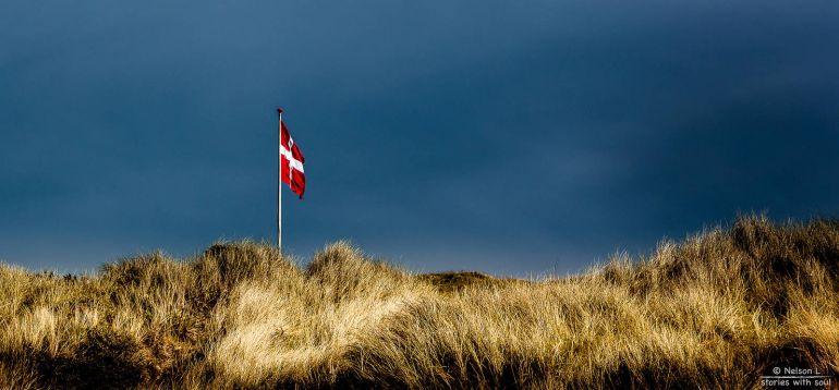 Общество, В Дании представили новое правительство | В Дании представили новое правительство