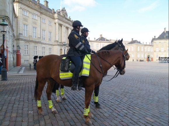 Калейдоскоп, Официальное мобильное приложение датской полиции за год скачали 170 000 раз | Официальное мобильное приложение датской полиции за год скачали 170 000 раз