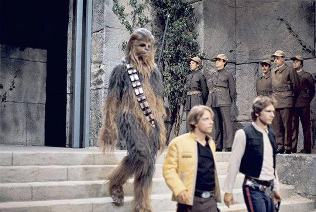 Культура, В новой серии «Звёздных войн» Чубакка стал наполовину финном | В новой серии «Звёздных войн» Чубакка стал наполовину финном