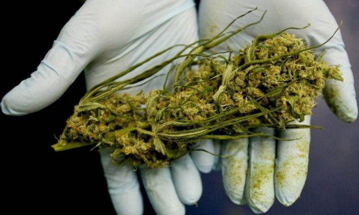 Общество, Парализованного шведа судят за использование марихуаны в медицинских целях |