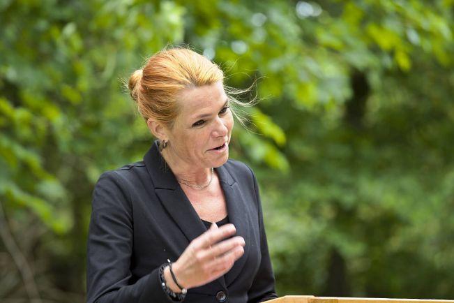 Общество, Датская министр посоветовала молодым сторонникам шариата найти работу | Датская министр посоветовала молодым сторонникам шариата найти работу
