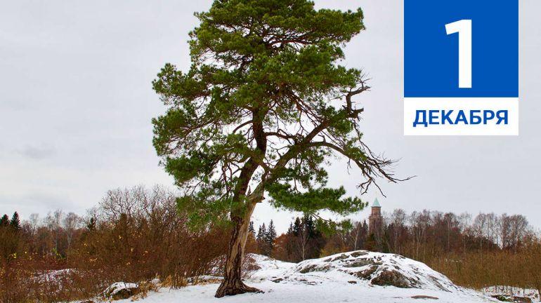 December, 1 | Календарь знаменательных дат Скандинавии