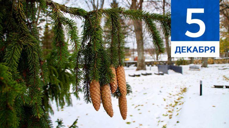 Декабрь, 5 | Календарь знаменательных дат Скандинавии