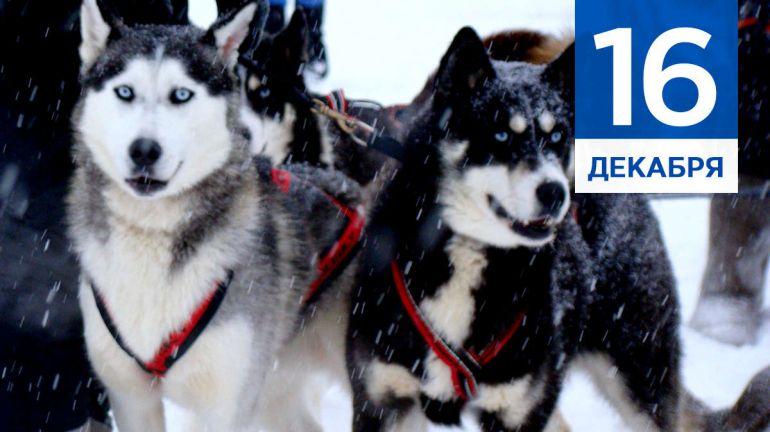 Декабрь, 16 | Календарь знаменательных дат Скандинавии