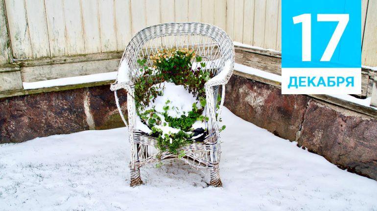 Декабрь, 17 | Календарь знаменательных дат Скандинавии