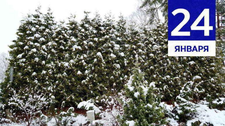JANUARY, 24 | Календарь знаменательных дат Скандинавии