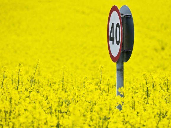 Полезная информация, Датские города смогут ограничивать скорость движения до 40 км/час | Датские города смогут ограничивать скорость движения до 40 км/час
