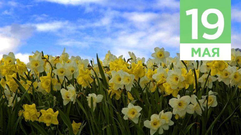 Май, 19   Календарь знаменательных дат Скандинавии