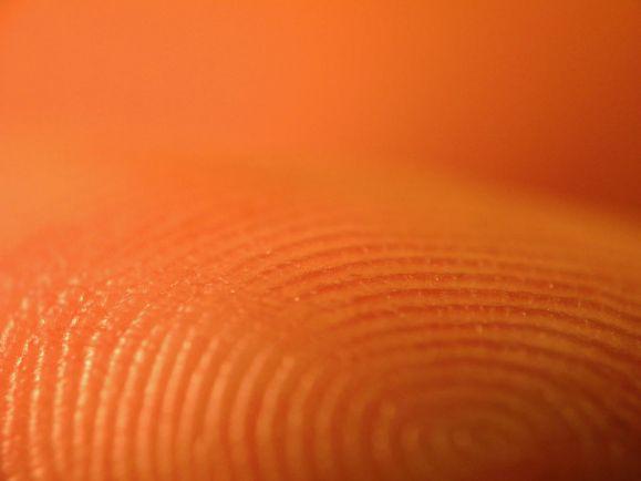 Калейдоскоп, Правоохранительные органы Швеции и США откроют друг другу доступ к базам отпечатков пальцев | Правоохранительные органы Швеции и США откроют друг другу доступ к базам отпечатков пальцев